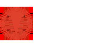 Phonanium Logo Light